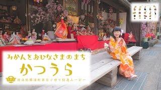 「みかんとおひな様の町 かつうら」 -徳島県勝浦町移住子育て促進ムービー-