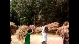 Thanichalla Njan - Loading chaff funny guys video