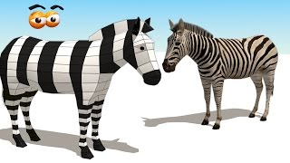CUBE BUILDER for KIDS (HD) - Build a Zebra for Children - AApV