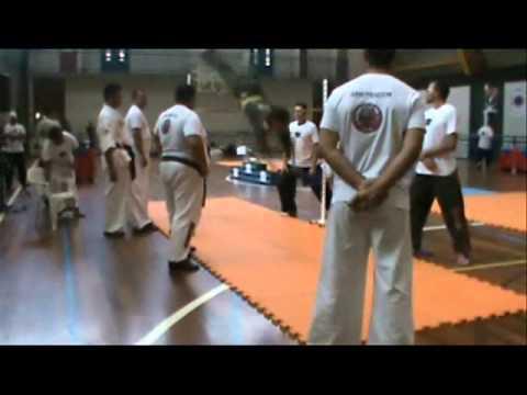 2º Torneio Hapkido Sério 2011(Vídeo Oficial - Parte 1/2)