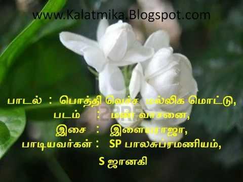 Pothi Vecha Malliga Mottu Tamil Karaoke For Male Singers video