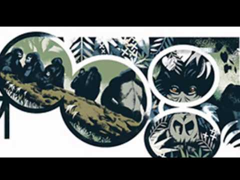 Dian Fossey Google Doodle