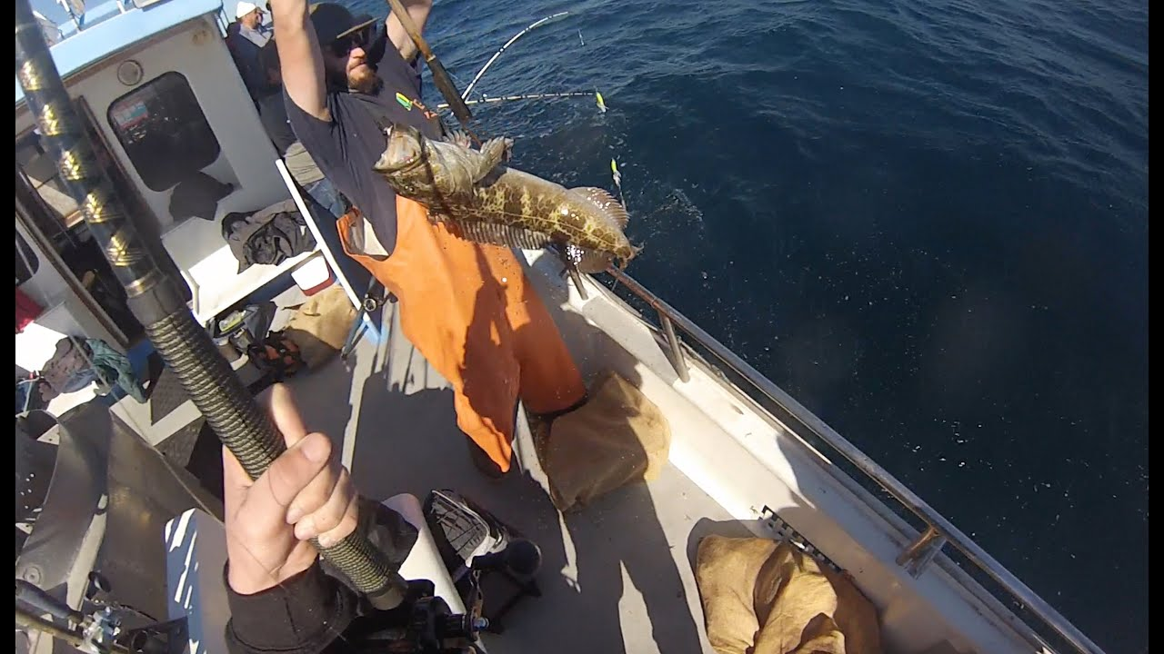 Lingcod Fishing in Big Sur  CA 11 15 15
