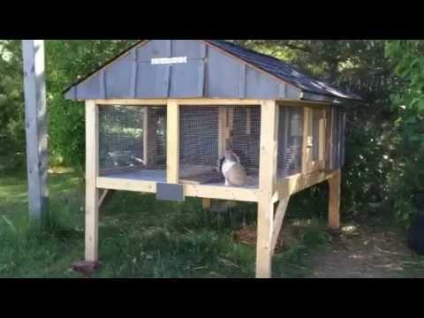 canadian rabbit hutch   part two   youtube