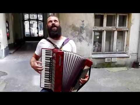 Witek Muzyk Ulicy Na Wilczej 29a śpiewa