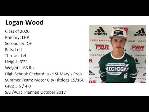 Logan Wood Class of 2020 Summer Baseball Highlights 2017