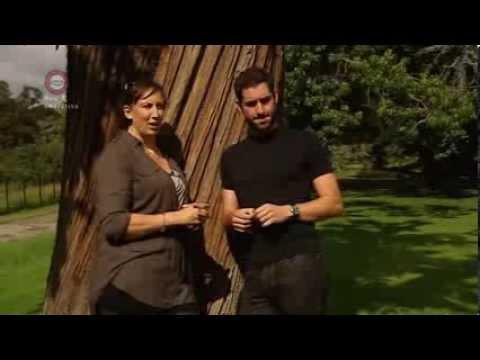 Sitcom Does Romance - Miranda Hart and Tom Ellis