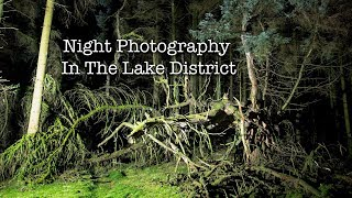 Creepy Tree In The Woods | Night Photography On Location At Gummers How . The Lake District