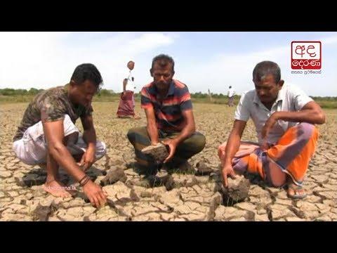 medirigiriya farmers|eng