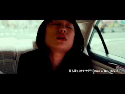 Trailer De Dawn Of The Felines — Mesunekotachi (HD)