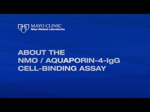 About the NMO/Aquaporin-4-IgG Cell-Binding Assay