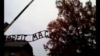 Auschwitz Gate: Arbeit Macht Frei