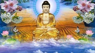 Mỗi Tối Mở Kinh Phật Tâm An Dễ Ngủ Phiền Não Tan Biến