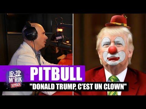 Interview Pitbull