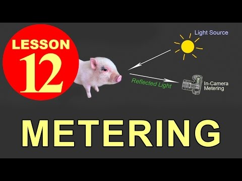 Lesson 12 - Metering (Tutorials about Photography)