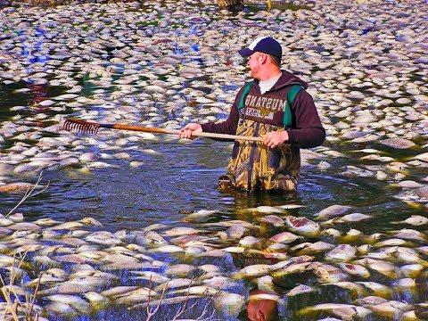 ТАКОЙ ЛОВУШКИ НА РЫБУ ТЫ ЕЩЕ НЕ ВИДЕЛ ! Вот это рыбалка 2018 ! Ты не поверишь