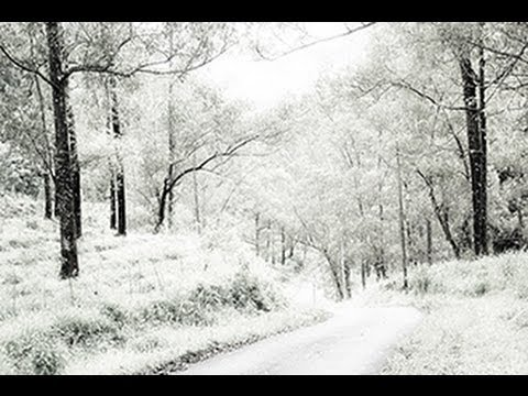 photoshop how to change a photo of summer into winter
