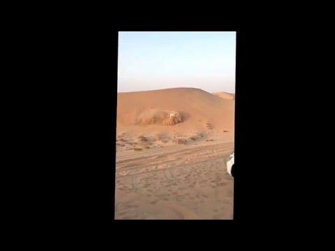 Toyota Land Cruiser. Abu Dhabi desert safari
