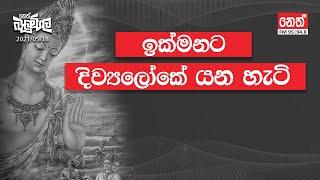 2021-05-21 | Neth Fm Balumgala