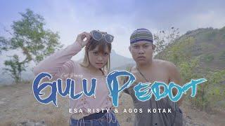 Esa Risty feat. Agos Kotak - Gulu Pedot ( Music Vidio) DJ TikTok | Mletree Asekk Bosquee