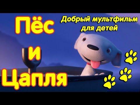Белый пес и цапля. Очень добрый мультфильм для детей