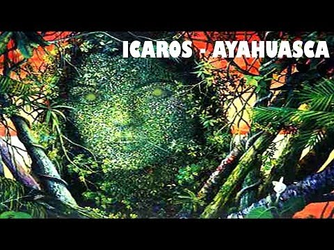 ICAROS Ayahuasca, Cantos for travel in Ayahuasca ceremonies, アヤフアスカ