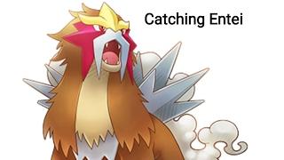 Pocketown - Catching Entei