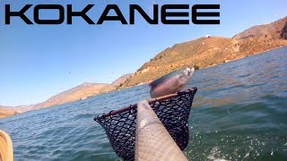 Trolling For Kokanee Salmon Anderson Ranch Reservoir Idaho