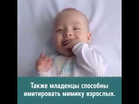 Мир глазами новорожденных