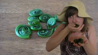 Fiddlehead Ferns (For Your Vegucation) : Cooking Tips : Funny Side Up