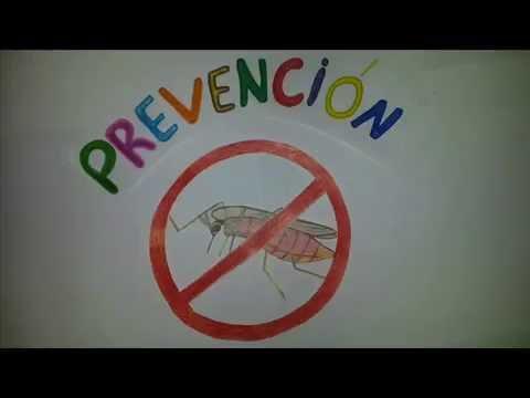La Malaria Y Su prevencion