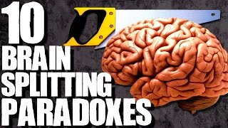 10 Paradoxes to Make Your Head Hurt | TWISTED TENS #45