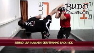MMA:Tecniche di allenamento spiegate da Davide Morini (Mixed Martial Arts Training Techniques) - #04
