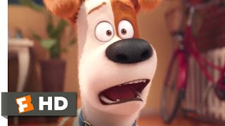 The Secret Life of Pets - Max's New Brother Scene | Fandango Family