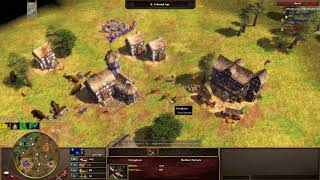 Age Of Empires 3 Pro Game
