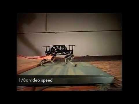 A robot that runs like a cat