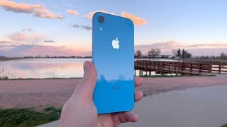 iPhone XR Review (Shot On iPhone XR) - The Perfect Size!