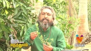 Mooligai Maruthuvam | முடக்கு வாதம்..! தீர்வு..? Arthritis [Epi 11 Part1]