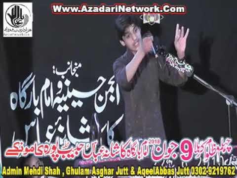 Zakir Ali Abbas Askari 9 June 2018 Habib Pura Kamoke