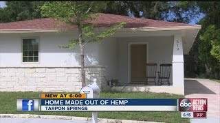 House made out of hemp