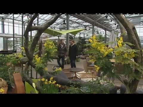 Frühlingstipps Aus Dem Garten Von Ehren Mit DB-mobil