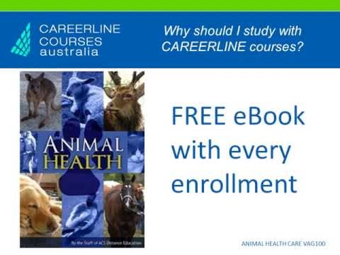 ANIMAL HEALTH CARE Course - Online