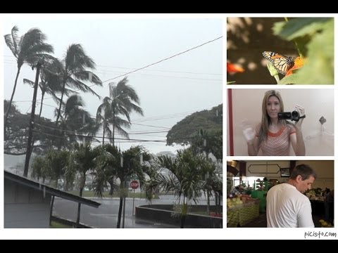 Maui Vlog: Stormy Winter, Thrift Store Shopping