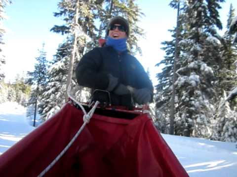 Dog Sled Rides at Mt. Bachelor Ski Resort, Oregon Trail of Dreams