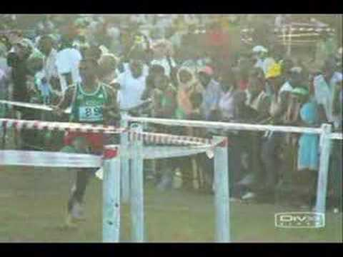 Eritrea's Tadese Vs Ethiopia's Bekele in Cross Country
