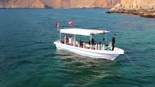 discover Oman  Scuba diving