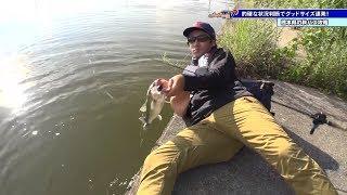 青木大介プロが熊本県で陸っぱり ルアーパラダイス九州TV
