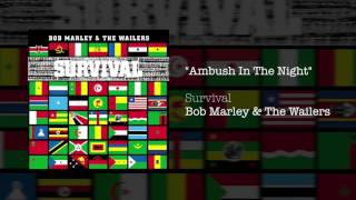 Ambush In The Night (1979) - Bob Marley & The Wailers
