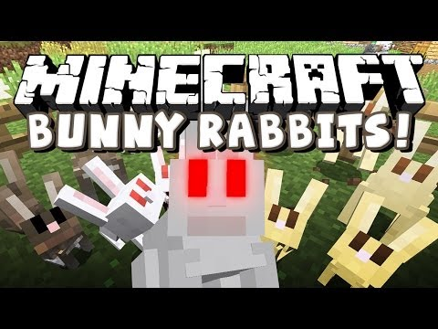 Minecraft Snapshot 14w27a - Bunny Rabbit Of Israphel?!