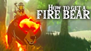 How To Get A FIRE BEAR - The Legend of Zelda: Breath of the Wild
